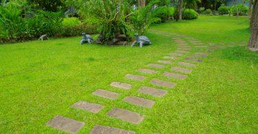 coupe-bordure jardin